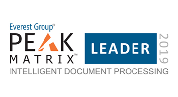 IDP PEAK Matrix 2019 Leader 360X197