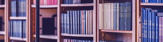 Создание цифровых библиотек и сохранение культурного наследия